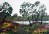 Peisaj pe Ialomita  (colectie particulara)