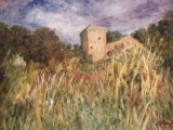 Castelul Lochleven-Scotia  (colectie autor)