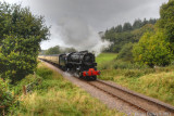 5197 in Leigh Woods next stop Crowcombe Heathfield