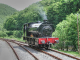 68011 runs round at Danycoed  - The Welsh Guardsman on the Gwili Railway