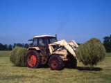 Tractor 002