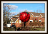 Berwick's Apple