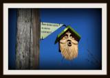 The Bearded Birdhouse