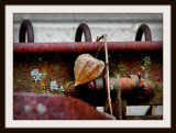 The Colors Of Rust