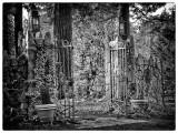 A Charles Addams fence