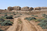 Dirt road within the Shahryar Ark