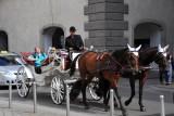 Carriage tour, Vienna