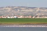 Flock of flamingos in Larnaca's Salt Lake