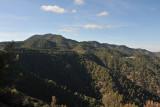 Forest covered Troödos Mountains near Kykkos Monastery