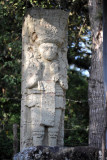 Stela 6 located along the path between the village and the main ruins