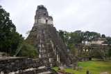 Temple of the Grand Jaguar (Templo I) from the Northern Acropolis, Tikal
