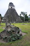 Templo I, Gran Plaza, Tikal