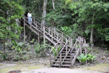 Stairs leading to the largest of Tikal's pyramids, Temple IV at the west end of the city