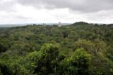View of Tikal from the top of Temple IV made famous as the Rebel Base on the planet of Yavin in Star Wars