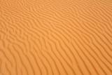 Abu Dhabi Mar12 0991.jpg