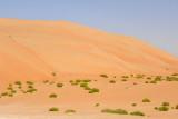 Abu Dhabi Mar12 1001.jpg