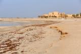 Abu Dhabi Mar12 0108.jpg