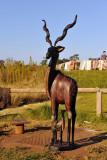 KrugerMay12 140.jpg