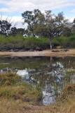 BotswanaJun12 0120.jpg