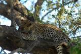 BotswanaJun12 0338.jpg