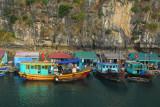 Main Street of a floating village, Halong Bay