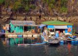 Kayak rental, floating village, Halong Bay