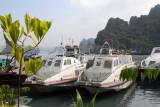 Port of Hon Gai - Quang Ninh 28 and 29