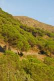 Cadaques to El Port de la Selva