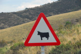 Spanish cattle sign