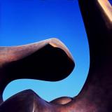 Henry Moore Vertebrae #5