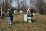 Spring apiary, April, 2011