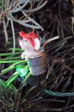 Mouse in thimble