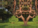 Kalider version of a Gumbo Limbo Tree