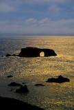 BlueYellow Polarizer CA Coast 8