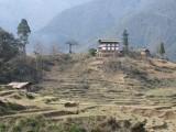 drive down to Punakha valley