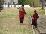 novice monks at the Mad Monk's