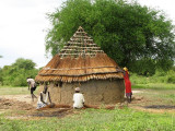 hut thatching
