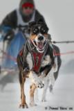Sport d'hiver - Winter sport