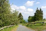Taunus (Spring 2011)