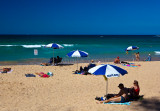 Manly Beach umbrellas