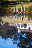 Reflection of Oaks Ranch in dam