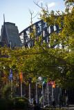 Sydney Harbour Bridge and trees