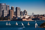 Sydney Harbour with yachts