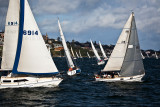 Yachts in race on Sydney Harbour
