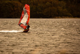 Windsurfer at Narrabeen Lake