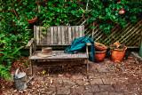 Our garden bench