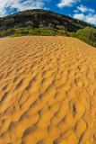 Palm Beach dunes