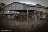 Neglected Farm
