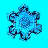 DSC00371Blue Mandala.jpg