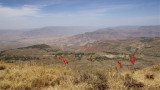Ethiopia, February-March 2012